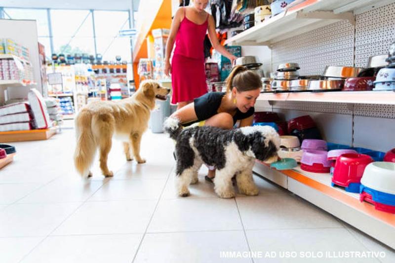 Arredamenti per negozi richiedi e confronta preventivi for Arredamento negozi genova